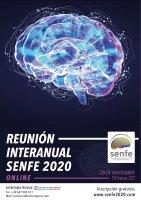 Reunión Interanual SENFE 2020